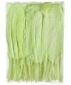 Groene sier veren 100 stuks13 cm