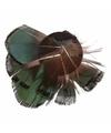 Haarveren groen