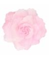 Corsage lichtroze bloem