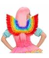 Luxe regenboog veren vleugels 52 x 40 cm